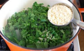 سبزیجات خرد شده و برنج و نمک و فلفل را اضافه میکنیم